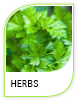 Products Herbs